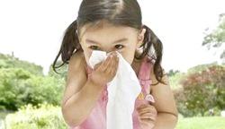Алергія у серпні