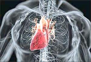 Діагностика та лікування дифузного кардіосклерозу