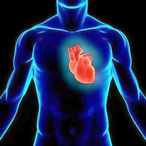 Атеросклероз грудного відділу аорти