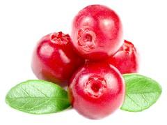 Які вітаміни в журавлині?