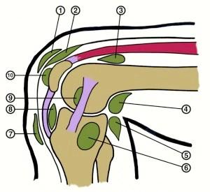 Запаленою колінного суглобу