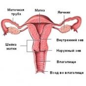 Що робити при непрохідності маткових труб?