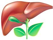 Ефективні жовчогінні засоби при холециститі