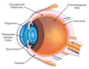 Лікування очей народними методами