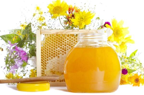 Чи можна їсти мед при панкреатиті?