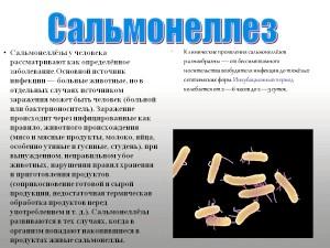 Ознаки сальмонельозу та його лікування в домашніх умовах
