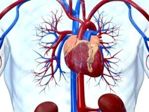 Симптоми и лікування постміокардіческого кардіосклерозу