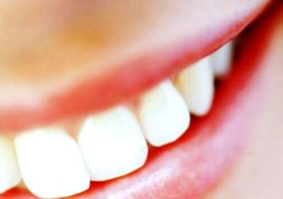 Біоінженерія не дозволено залишитись без зубів