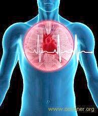 Лікування захворювань серцево-судинної системи народними засобами