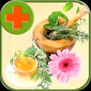 Корисні й ефективні народні засоби проти захворювань жкт