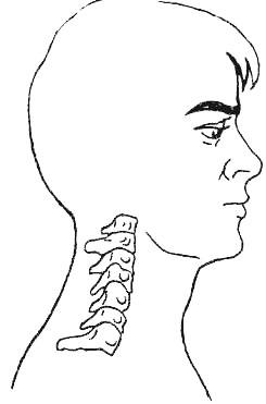 Симптоми остеохондрозу шийно відділу