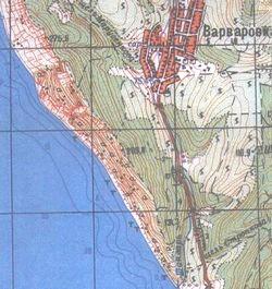 В'яз рівнинний (граболістний), або берест ulmus carpinifolia rupp.